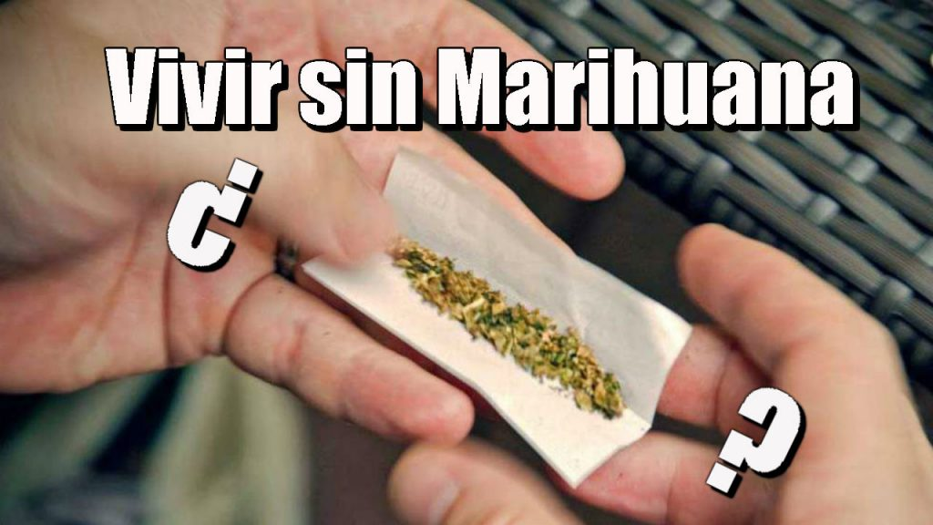 Como Dejar De Fumar Porros 72 Beneficios De Dejar La Marihuana Actuo Psicologo Barcelona